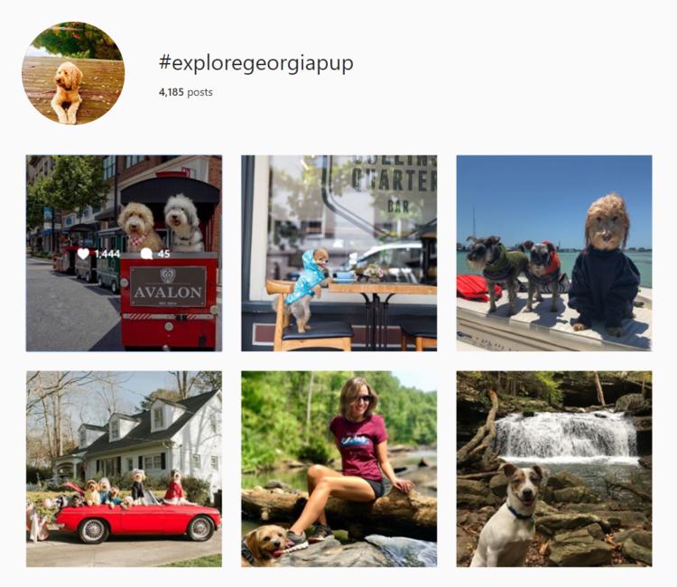 screenshot of Instagram hashtag archives for #exploregeorgiagroup