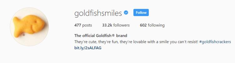 screenshot of Instagram profile header for Goldfish Smiles