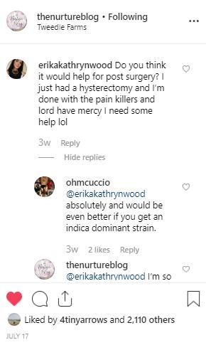 Screenshot of a post+ comments from @thenurtureblog on Instagram.
