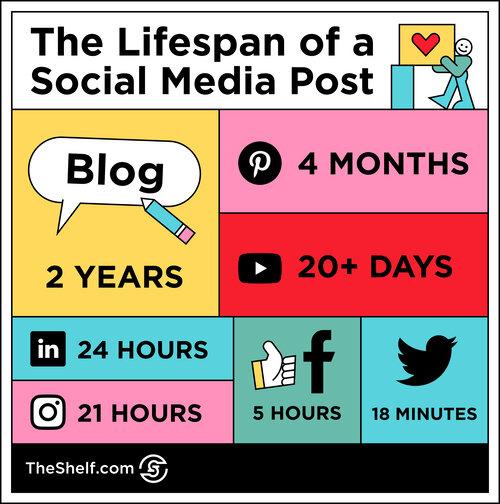 lifespan  of a social media post.jpg