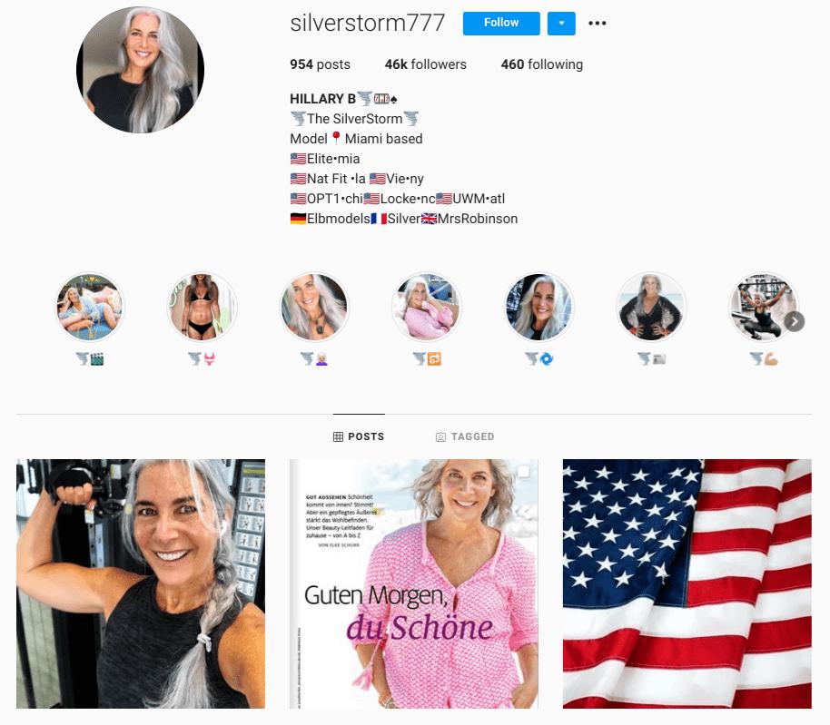 screenshot of Instagram profile of @silverstorm777