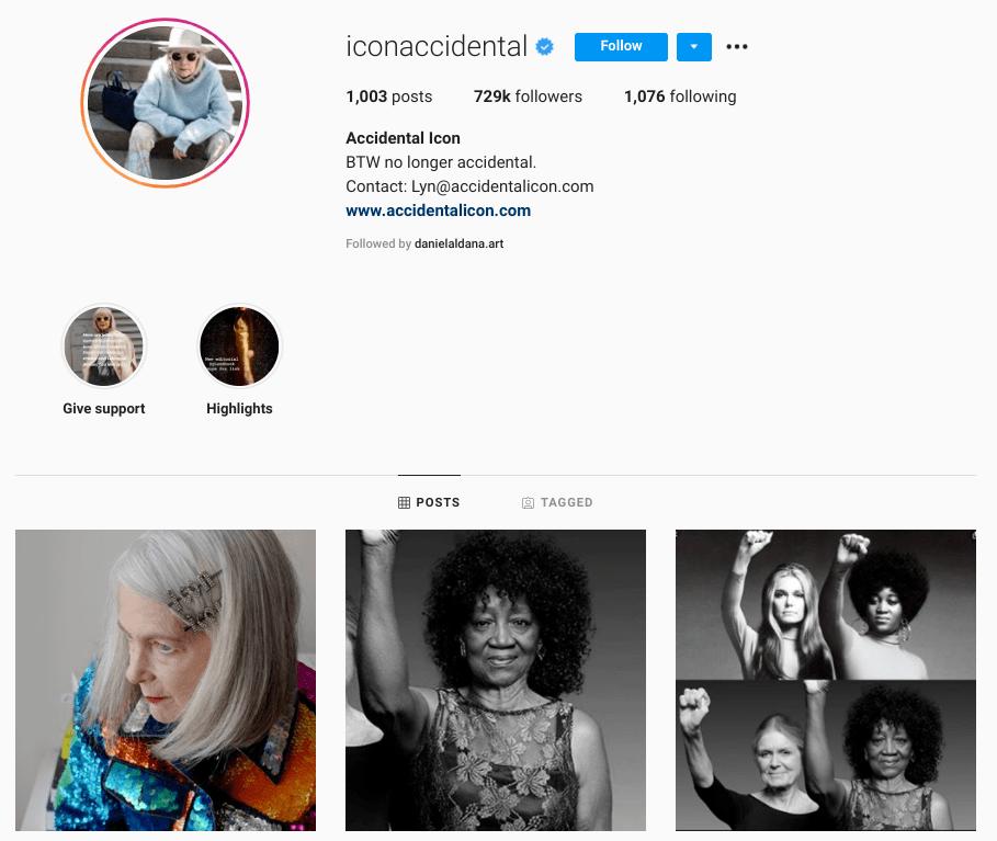 screenshot of Instagram profile of @iconaccidental